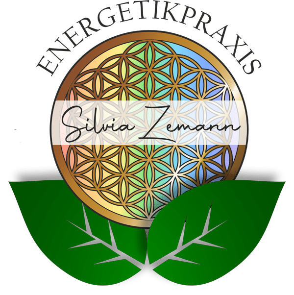 Logo Energetikpraxis Silvia